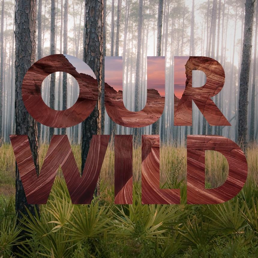 Our_Wild